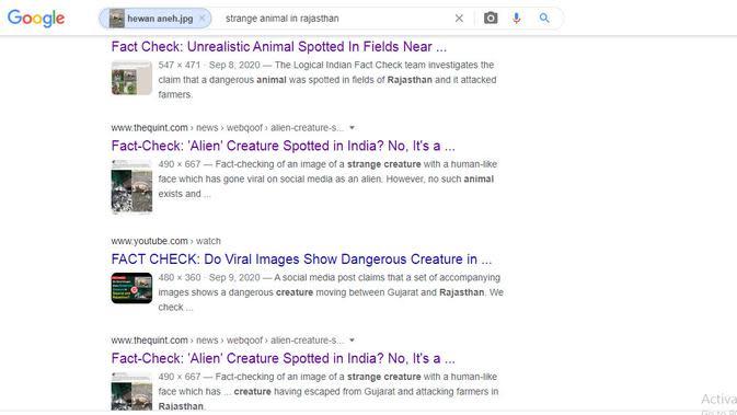 Hasil penelusuran Google Image