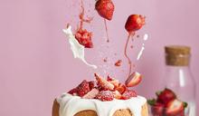 微甜室草莓蛋糕超搶手 一顆蛋糕等同吃了整盒草莓