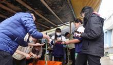 馬高學生參訪漁村 體驗養殖流程 (圖)