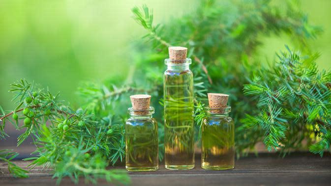 Tea Tree Oil (iStockphoto)