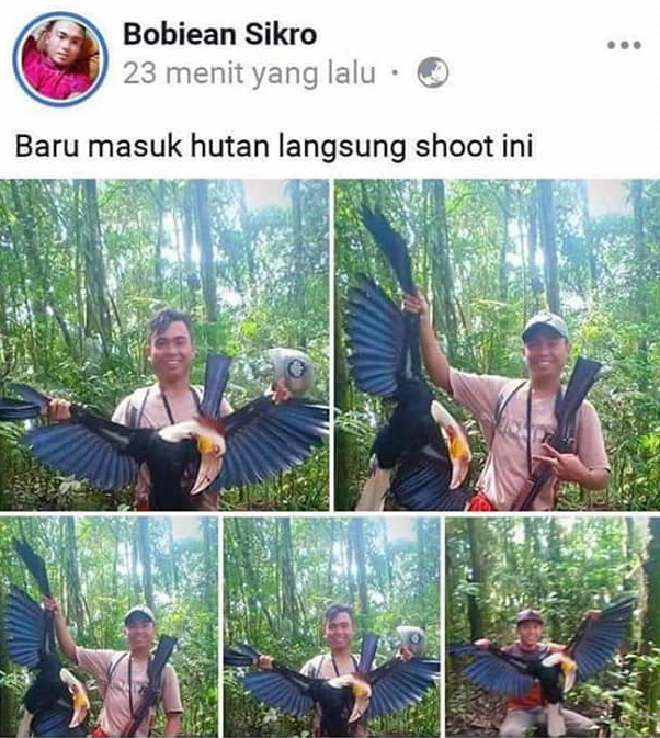 Man pictured posing with the dead hornbill bird he shot while hunting in Indonesia.