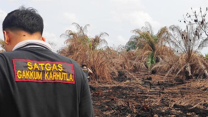 Buka Kebun Baru, Perusahaan di Riau Diduga Sengaja Bakar Lahan