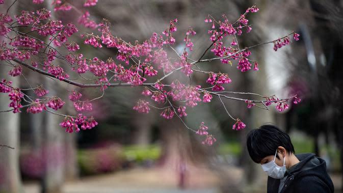 Seorang pria mengenakan masker melewati pohon sakura di taman Ueno, Tokyo, Jepang (12/3/2020). Di tengah kekhawatiran akan penyebaran virus corona COVID-19, Gubernur Tokyo Yuriko Koike menghimbau warga menghindari kerumunan saat pesta tradisional