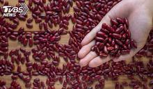 高雄農會員工「盜走132噸紅豆」!轉賣暴利曝光