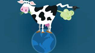 【探索立體AR】牛放屁威力大!餐桌上的食物和全球升溫有何關係?