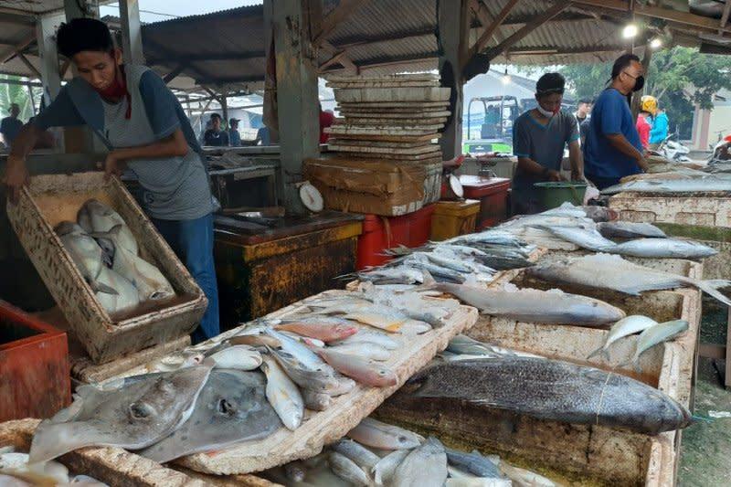 Sepi pembeli, nelayan di Serang bingung mau jual ikan kemana lagi