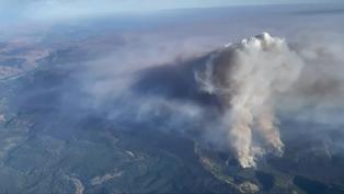 美國叢林大火:飛機除了投水彈還能做甚麼?