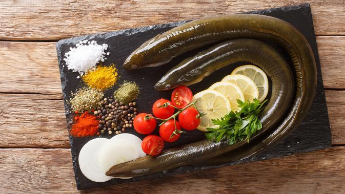 ilustrasi belut/copyright By AS Food studio from Shutterstock