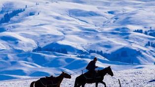 體驗暢快滑雪!塞上賞雪五日之旅