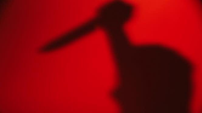 Wanita Tanpa Busana Penuh Darah dengan 12 Tusukan, Korban Perampokan