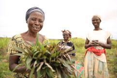 培力剛果婦女 翻轉家庭的未來