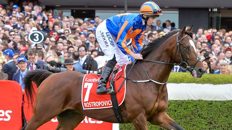 Rostropovich has been taken to a veterinary facility after pulling up lame in the 2019 Melbourne Cup.