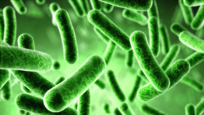 Ilustrasi Bakteri. (Sumber: merdeka.com)