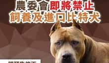 比特犬將禁養 陳吉仲:違反禁令者最高罰金25萬!