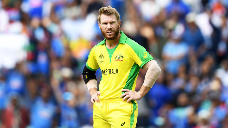 David Warner during the match against India. (Getty Image)