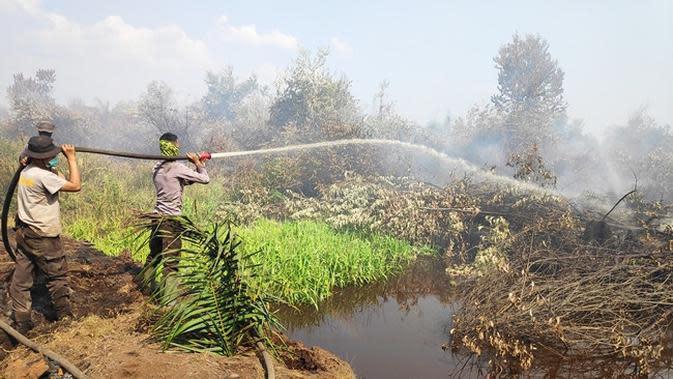 Petugas memadamkan kebakaran lahan di Pelalawan agar tak menimbulkan bencana kabut asap. (Liputan6.com/M Syukur)