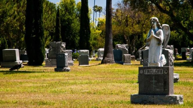 Demi Disebut Beda, Negara ini Buat Bioskop di Kuburan