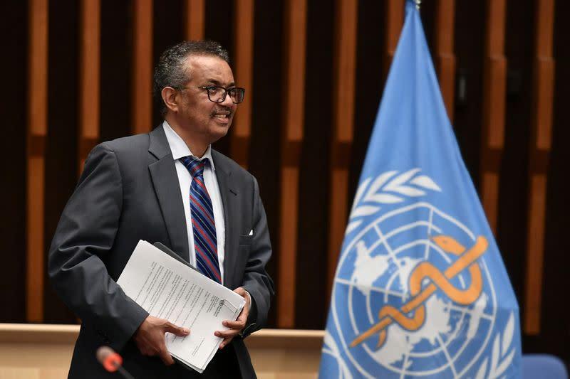 Who's WHO? The World Health Organization under scrutiny
