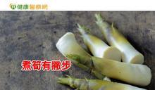 吃竹筍也中毒? 營養師教你安心吃鮮筍
