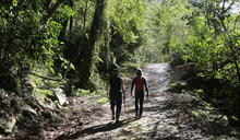 維護森林生命力的「心跳」——你不知道的森林護管員日常