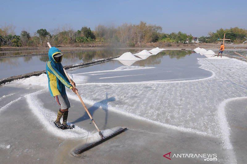 Pemerintah bangun garam industri terintegrasi untuk penuhi kebutuhan