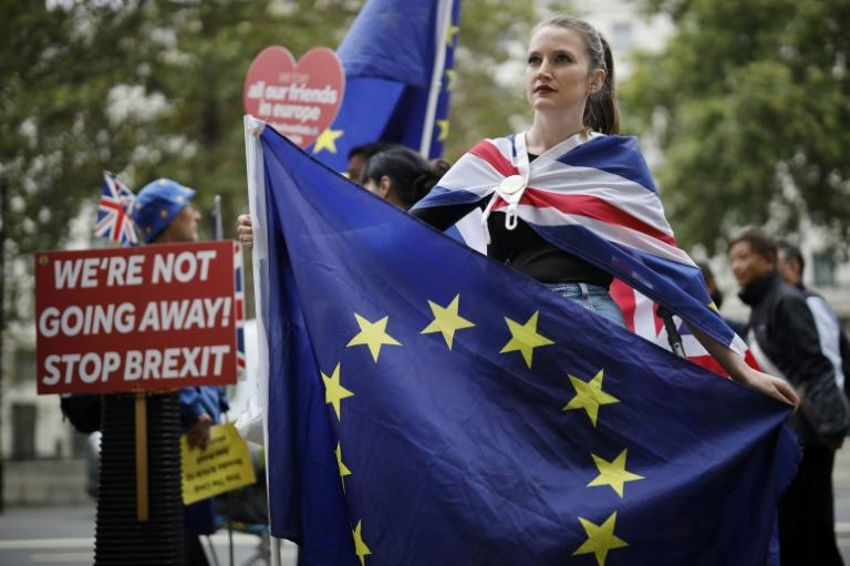 Protesters have demonstrated in London for and against Brexit