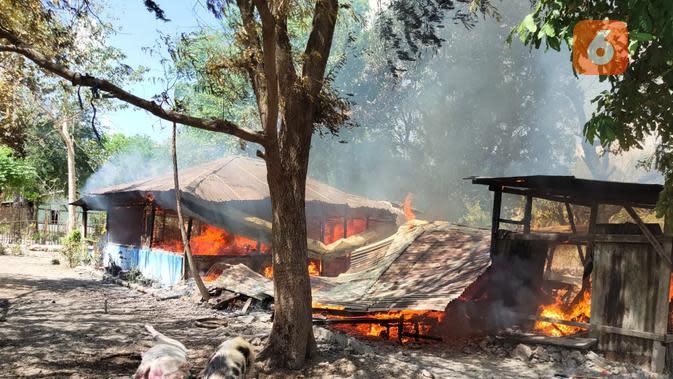 Perselisihan Pemuda di Kupang NTT, 1 Tewas dan 7 Rumah Dibakar