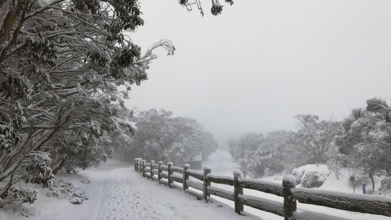 MT BULLER SNOW FALL