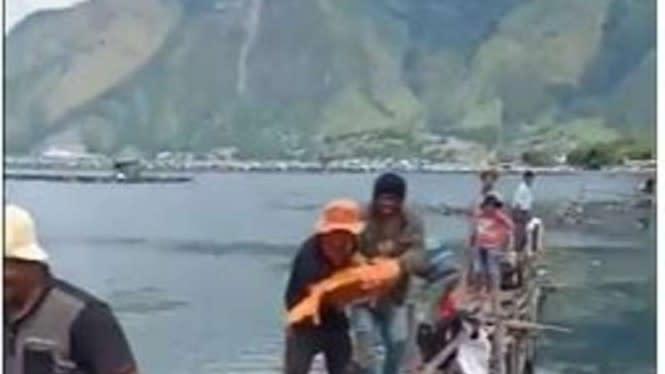 Viral Ikan Mas 15 Kg Ditangkap di Danau Toba, Dikait-kaitkan Musibah