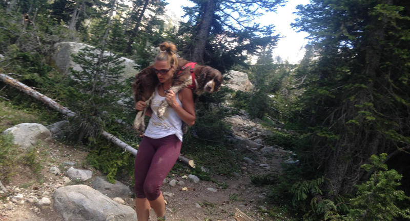Tia Vargas rescued an injured English springer spaniel dog from a mountaintop at Table Rock, Idaho, United States