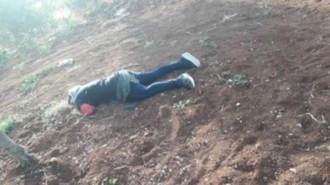 Biadab, Pasukan Sultan Murad Culik dan Bunuh Gadis Remaja