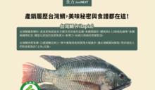 【食力】有產銷履歷的「台灣鯛」,不只能追蹤追溯、品質更有保障!