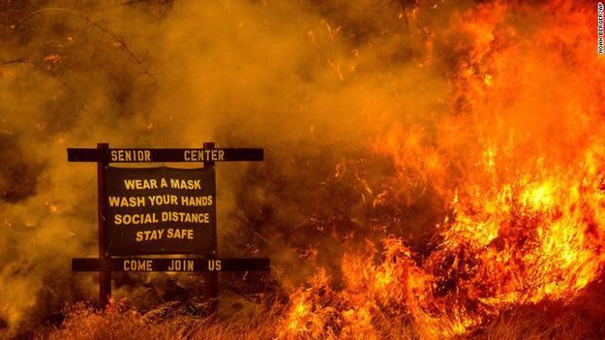 Kebakaran Hutan (Noah Berger/AP)