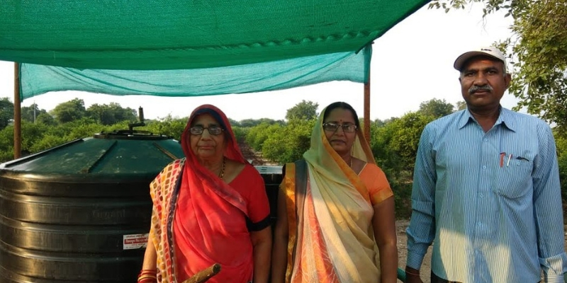 Lalita has employed the hydroponic method of farming in which plants are grown without soil in a water solvent containing mineral nutrient solutions.