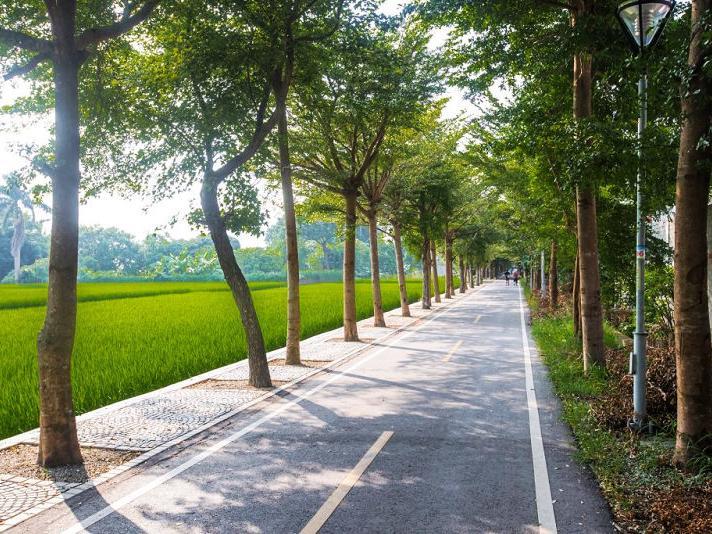 台中市潭雅神綠園道自行車道