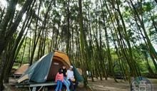 南投「覓境」綠光森林營地 山林間開出小清新咖啡館
