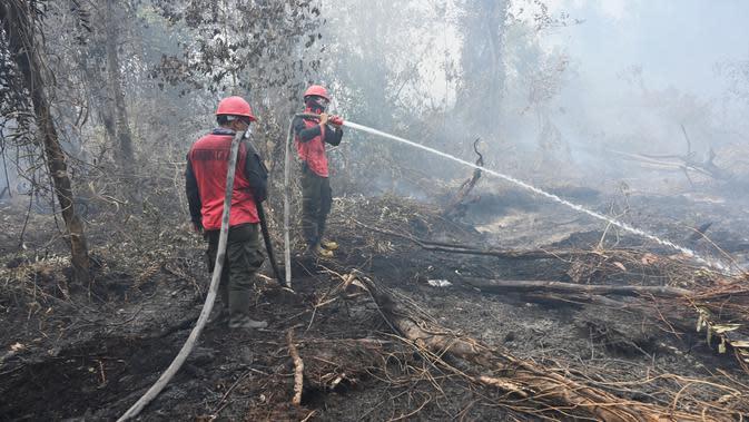 185 Titik Panas Terpantau di Kalsel, Kebakaran Lahan Terus Meluas