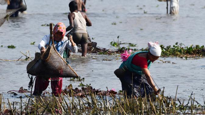 """Penduduk desa mengikuti acara memancing bersama dalam perayaan panen Bhogali Bihu di Danau Goroimari di Panbari, Assam, India, pada 14 Januari 2020. """"Bhogali Bihu"""" menandai berakhirnya musim panen di bagian timur laut negara bagian Assam. (Xinhua/Str)"""