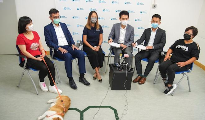 Miss Chow (far left), during a press conference held by the Society for the Prevention of Cruelty to Animals. Photo: Winson Wong