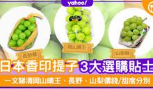 【香印提子2020】日本香印提子3大選購貼士!一文睇清岡山晴王、長野、山梨價錢/甜度分別