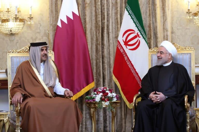 Iran's President Hassan Rouhani (R) meeting with the Emir of Qatar Sheikh Tamim bin Hamad al-Thani in Tehran