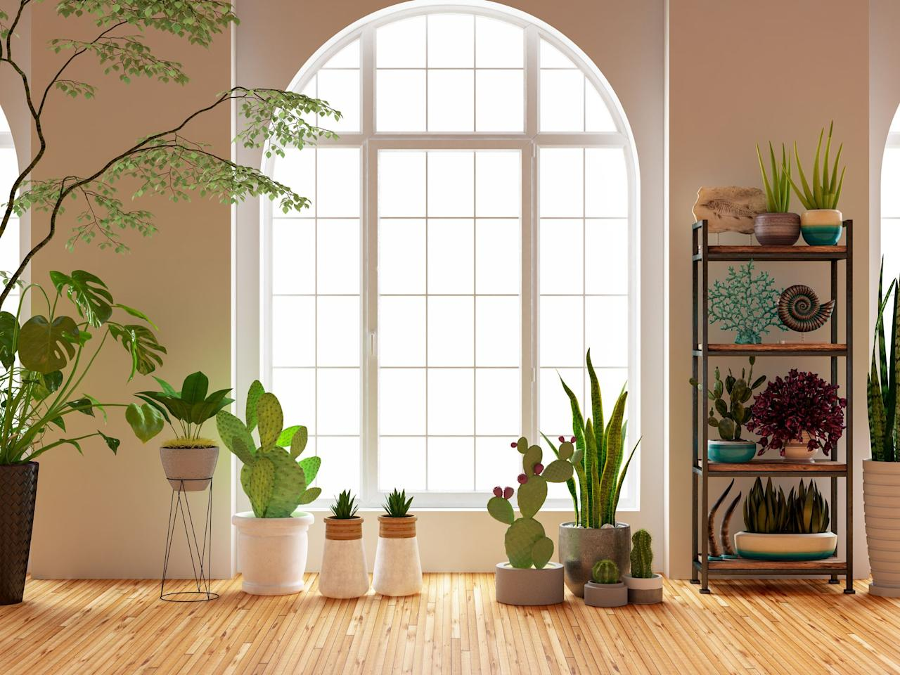 """<p>You've already cultivated your own <a href=""""https://www.veranda.com/outdoor-garden/g1573/landscaping-ideas/"""">captivating garden</a>, but now it's time to move that verdant oasis inside. Leafy, flourishing houseplants not only add a pop of green to your space, but also help to purify the air within your home and spark creativity. While the <a href=""""https://www.veranda.com/outdoor-garden/g28460765/autumn-flowers-and-plants/"""" target=""""_blank"""">bountiful greenery and blooming flowers</a> are already stunning on their own,  stylish, <a href=""""https://www.veranda.com/outdoor-garden/g31940674/outdoor-planters/"""" target=""""_blank"""">one-of-a-kind planters</a> and pots offer the perfect opportunity to experiment with colorful motifs and sculptural shapes. </p><p>Instead of crowding your windowsills with plain terra-cotta pots, look for clever designs from local ceramists or dramatic stools to give your plants the boost they need. Whether you're a rising plant expert looking to repot your growing succulent collection or trying to dress up <a href=""""https://www.veranda.com/decorating-ideas/g32677341/best-artificial-plants/"""" target=""""_blank"""">elegant artificial plants</a>, this list of the most charming indoor planters has got you covered. Oh, and don't forget to water those beauties. </p>"""