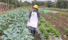 城市農園 體驗農事