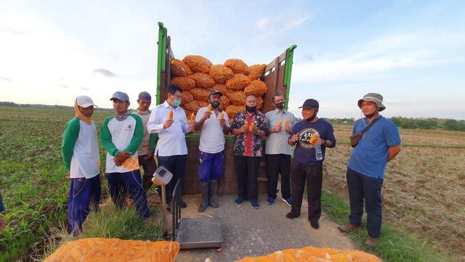 Direktur Perbenihan Tanaman Pangan Kementerian Pertanian, Mohammad Takdir Mulyadi melakukan panen Pengembangan Petani Produsen Benih Jagung Hibrida (P3BTP) Berbasis Korporasi di Tuban. (Dok Kementan)