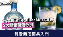 龍舌蘭酒簡易入門 一文搞清Tequila、Mezcal等5大龍舌蘭酒