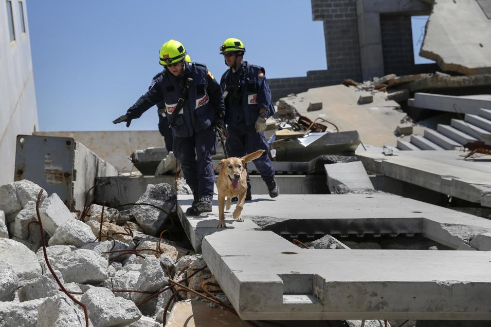 Rescue specialists for USA-1 and their canine rescue dog search a mock disaster area during a training exercise at the Guardian Center in Perry