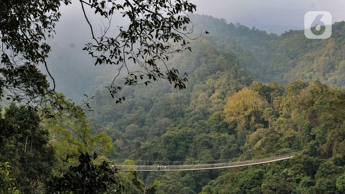 Suasana wisata Jembatan Gantung (Suspension Bridge) Situ Gunung, Sukabumi, Jawa Barat, Minggu (20/9/2020). Jumlah wisatawan yang berkunjung ke Jembatan Gantung terpanjang se-Asia Tenggara tersebut menurun drastis. (merdeka.com/Iqbal S. Nugroho)