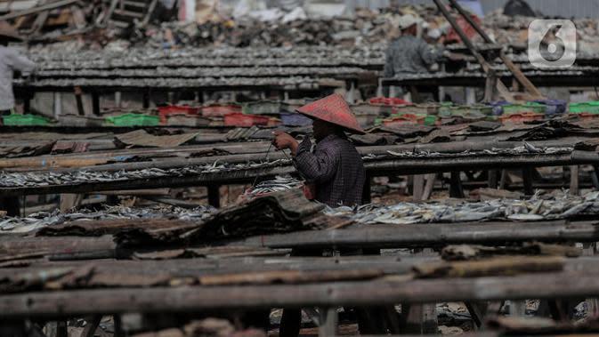 Pekerja saat menjemur ikan di kawasan Kampung Nelayan Muara Angke, Penjaringan, Jakarta Utara, Selasa (29/9/2020). Harganya pun, mahal atau murah tergantung dengan jenis ikan yang dibutuhkan masyarakat. (Liputan6.com/Johan Tallo)