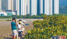 環境局「綠色就業計劃」招聘達近5成