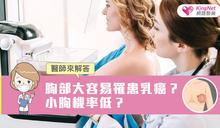 胸部大容易罹患乳癌?小胸機率低?醫師來解答
